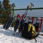 snowshoes and hiking poles