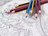Coloring Books for Adults Now on Zino image