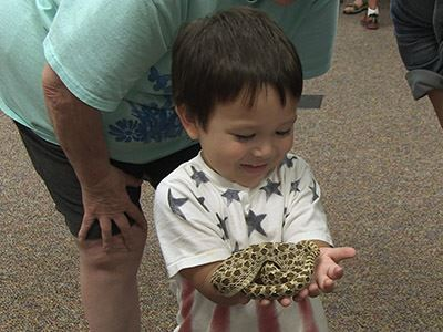 STEM Saturdays child holding snake