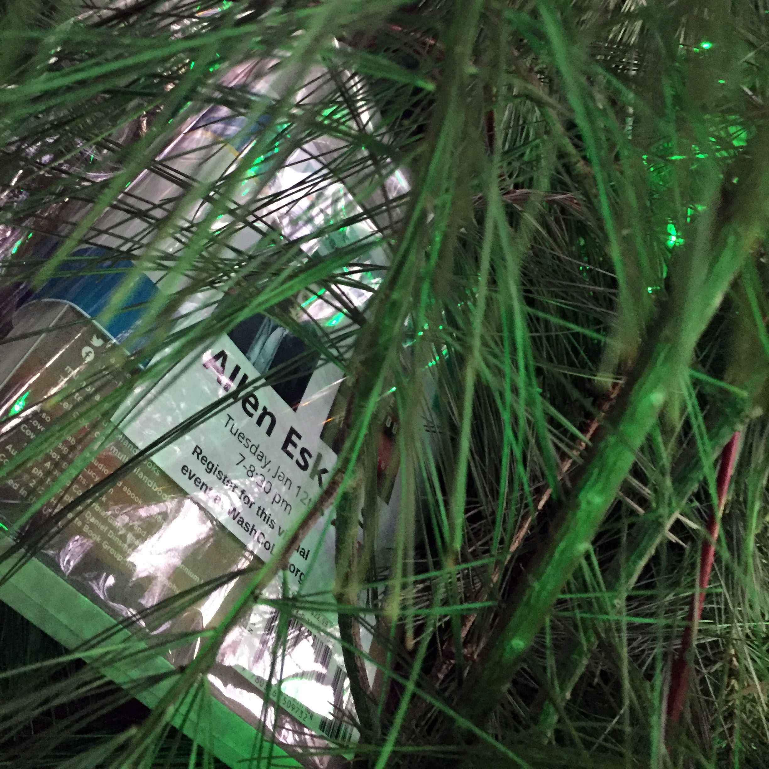 Image of book laying in a green plant