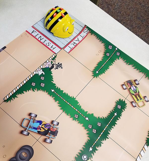 Bee-Bots poised to start a race